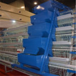 Used Poultry Chicken Cages For Sale