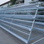 Chicken Farming Cages-A Low Cost Investment in Your Poultry Manufacturer