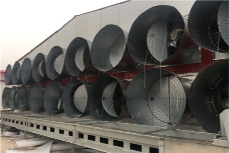 The machine of ventilation system can hepl your hicken run a good air circulation.