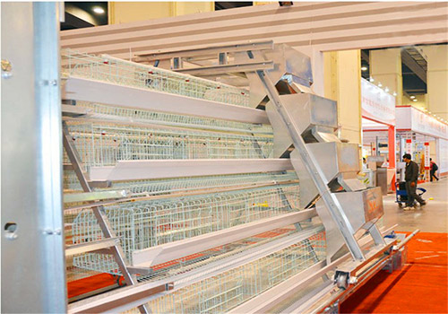 Four tier of A-type chicken cage are in exhibition.