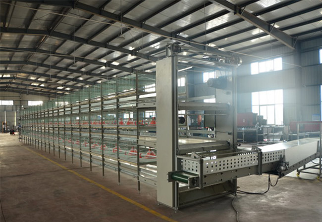 Poultry farming for broiler cage equipment mainly refer to H-type cage equipment.