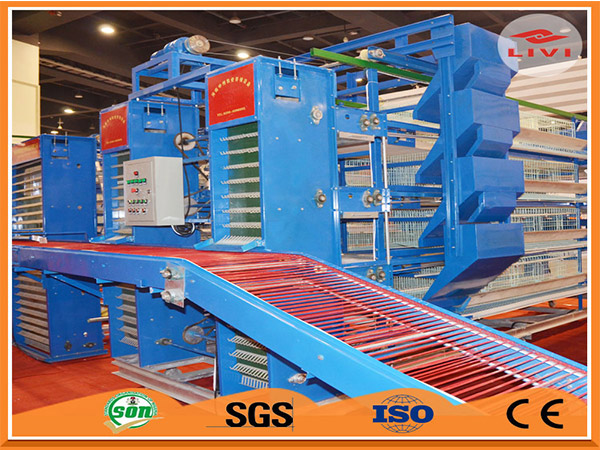 Livi automatic layer battery cage system have the automatic egg collection system.