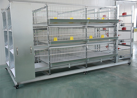 No matter what types of broiler rearing cage system, you can finally find out the one that suitable for your farm and chicken coop.