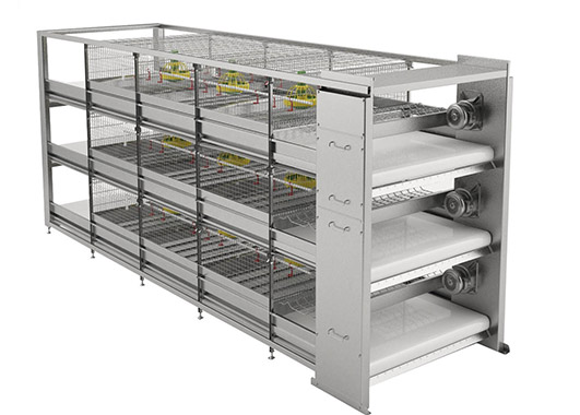 Battery cage system for broilers are becoming and more popular in for broiler raising industry.