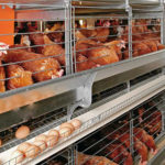 Chicken Equipments Used in Poultry Farming Industries