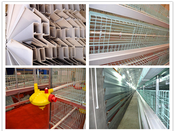 chicken farm supplies include poultry waterer and drinking troughs.